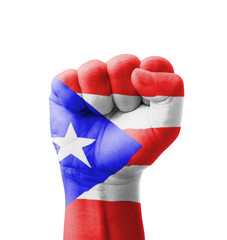 Fist of Puerto Rico flag painted, multi purpose concept