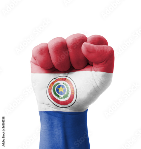 Fist of Paraguay flag painted, multi purpose concept