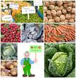 biologisch angebaut