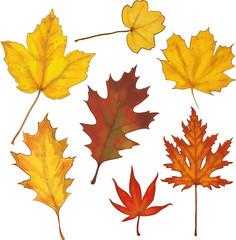Laub gemalt Herbst