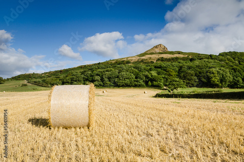 Hay bale at Roseberry Topping
