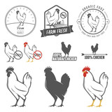Set of vintage chicken meat labels and design elements