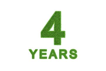 4 Year eco-friendly anniversary celebration