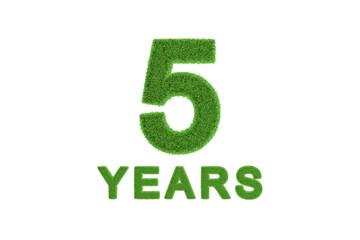 5 Year eco-friendly anniversary celebration