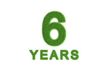 6 Year eco-friendly anniversary celebration