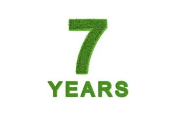 7 Year eco-friendly anniversary celebration