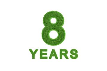 8 Year eco-friendly anniversary celebration