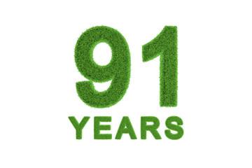 91 Years green grass anniversary number