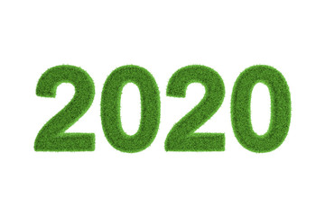 2020 New Year date in green grass