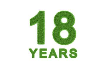 18 Years green grass anniversary numbers