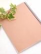 アイビーの葉とノート