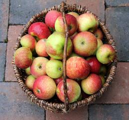 speiseäpfel