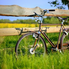 Old vintage brown bicycle near the fence of a flower field. Shal
