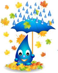 Herbstwetter Regen Herbstlaub