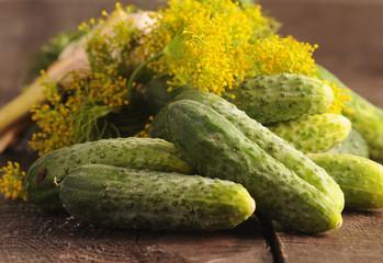 Świeże ogórki z koprem włoskim i czosnkiem