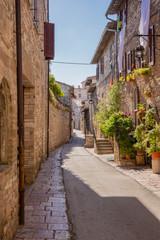 Strada con fiori, Assisi