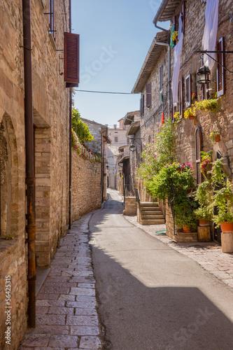 Obraz na Szkle Strada con fiori, Assisi
