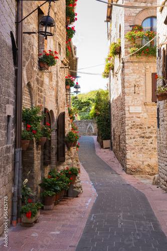 Strada medievale con fiori, Assisi