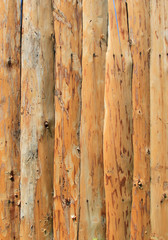 A fragment of a wooden fence