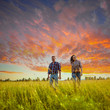 couple walking through the field