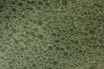 Texture of soap water on a gray-green background