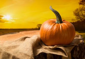 Sunset Pumpkin