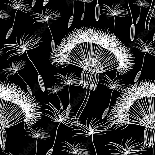 Fototapeta Seamless background with overblown dandelion