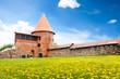 Kaunas castle yard