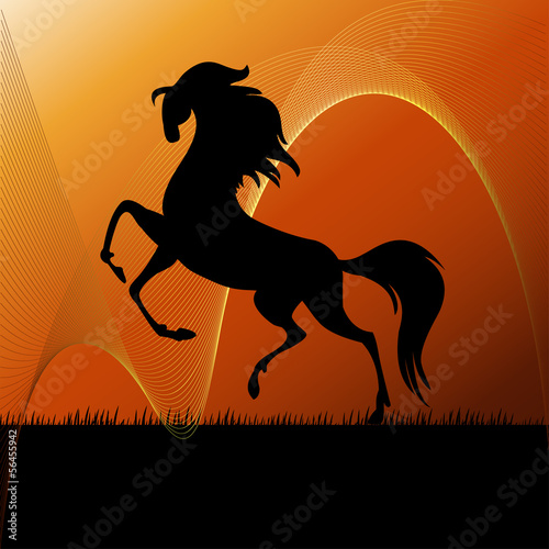 Running horse on grass silhouette