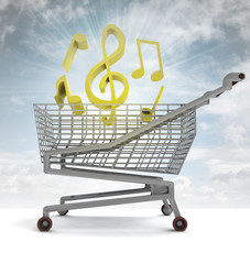 shoping cart full of music and sky flare