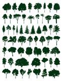 Fototapety Trees set