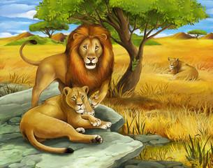 Safari - lions - illustration for the children