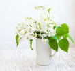 Bouquet of a white  lilac
