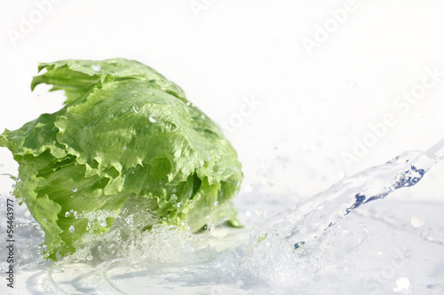 Fresh lettuce with water splash