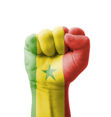 Fist of Senegal flag painted, multi purpose concept