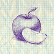 Sketch illustration of apple