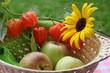 Herbstfrüchte im Korb