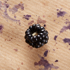 Single fresh blackberry on brown paper
