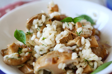 mushroom risotto close-up in white bowl