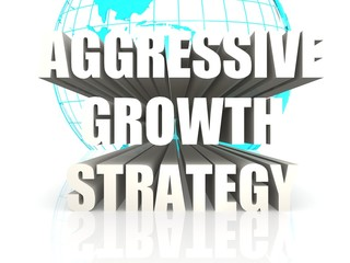 Aggressive Growth Strategy