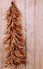 chicken feather duster