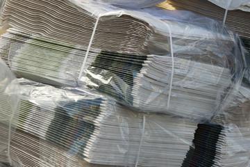 rivista - giornale - stampa