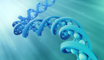 DNA strand model