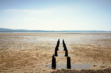 Double row of wooden posts near Millom