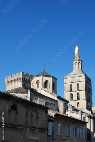 church of Notre Dame and Popes Palace in Avignon, France