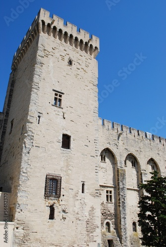 Tower of Popes Palace in Avignon, Provence, France
