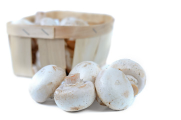 Fresh white agaricus or button mushrooms