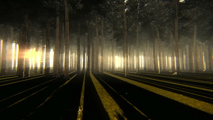 Strolling through trunks of a beautiful forest at dusk or dawn