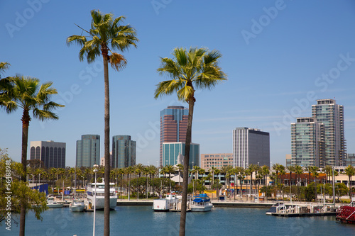 Poster Los Angeles Long Beach California skyline from palm trees of port