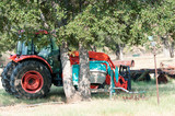 Orange farm tractor under trees